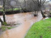 Brayford river field floods