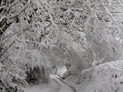 East Devon is hit by more snow