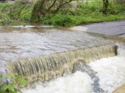 Heavy rain leads to localised flooding