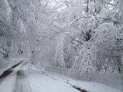 Snow down