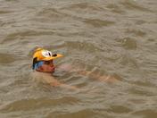 Barnstaple river swim
