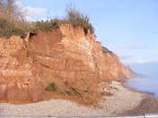 Sidmouth cliffs are eroding