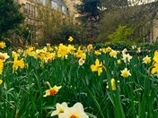 Spring at the Royal Fort, HH Wills, University of Bristol