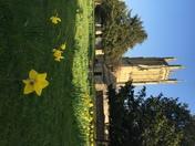 St Cuthberts Church, Wells
