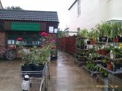 Rainham horticulture society