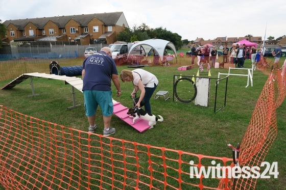Paws in the Park Dog Show, Hornchurch