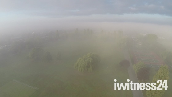 Early Morning view over Hylands Park and the Fog
