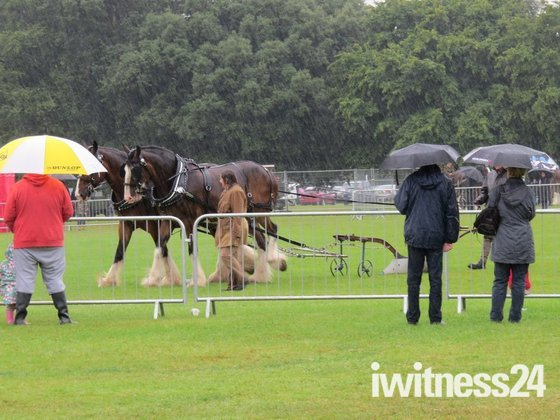 Havering Show 2014 Monday
