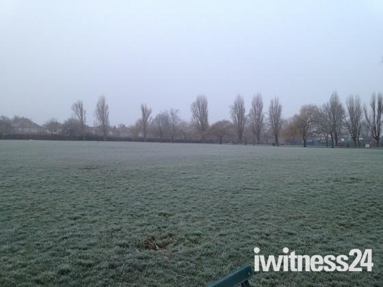 Frosty morning at Hylands Park, Hornchurch