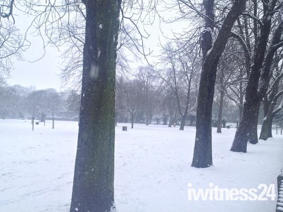 Snowmageddon in Wanstead