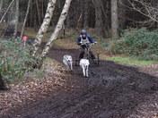 BSHRA Fun Day at Rendlesham Forest
