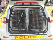 Woofbridge, Bark in the Park. Police Dog