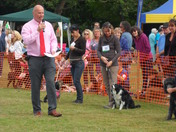 'Woofbridge' dog day