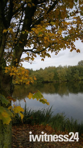 Needham Lake
