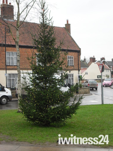 ACLE XMAS TREE BACK AFTER GALES.