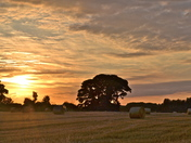 GLORIOUS SUNSET OVER FIELDS 9/8/2013