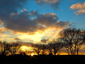 A pair of silhouette abstract style sunset views of Diss