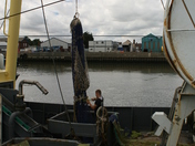 Fishing boat in for net repairs, Great Yarmouth