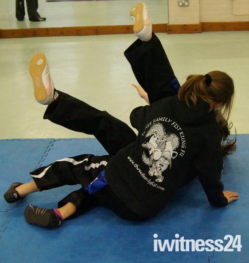 Three Family Fist Kung Fu