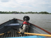 Hickling Broad,Ruby in her lifejacket.