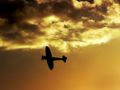 spitfire MK 1X