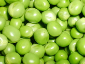 Cluster of freshly shelled peas - straight from the pod