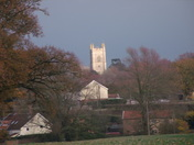 View of Lush Bush With Redenhall Church in Backround