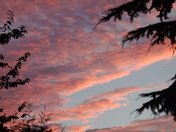 Red Sky over Harleston