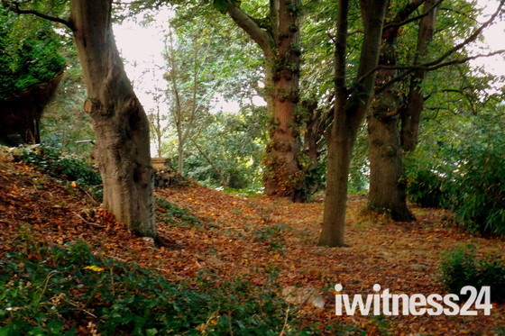 Autumnal sights in lowestoft