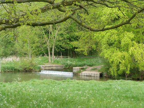 A Walk Through Knettishall Heath