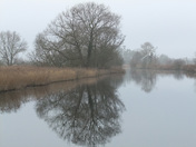 River Ant at How Hill in mist
