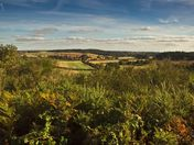 Views from Wiveton Downs
