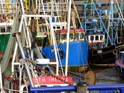 Boats in Fisher Fleet