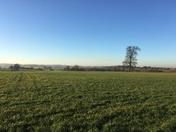 Hitchin countryside