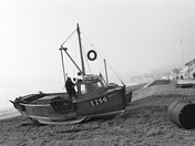 Port Royal, Sidmouth 1971