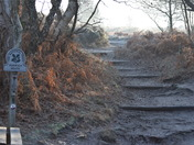 Dunwich Heath Walk