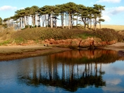 Otter Esturary and Budleigh beach