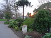 Just before sunset at Manor Gardens