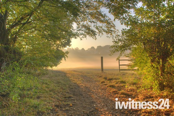 Local walk on a Misty Morning