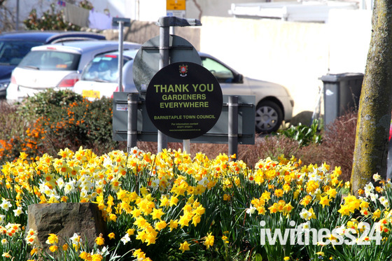Barnstaple roundabouts in bloom