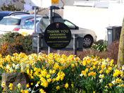 Barnstaple roundabouts in bloom