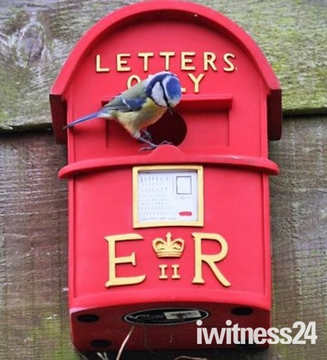 Letter, what letter?