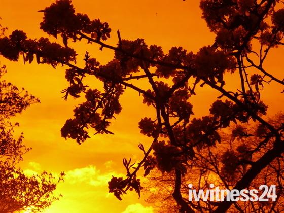 Sun set  in valentines park Ilford