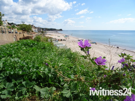 A view over Budleigh beach