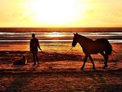 Beach training at sunset.