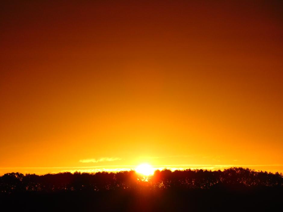 Mooie goud-gele zonsopkomst