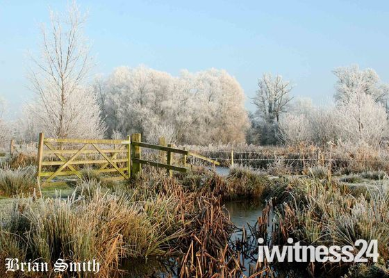 FROST ON THE MERE