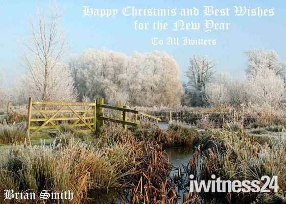 HAPPY Christmas to all that use IWITNESS