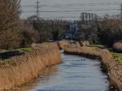 Beautiful Cambridgeshire Fens