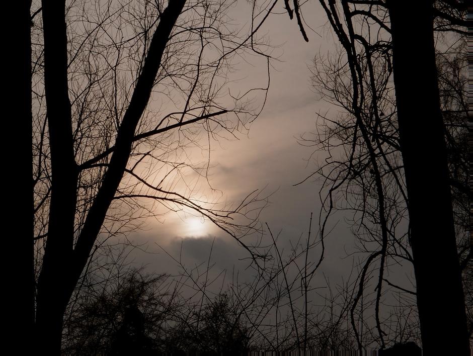 27-01-2018 Waterig zonnetje aan het einde van de middag,Huizen Noord-Holland
